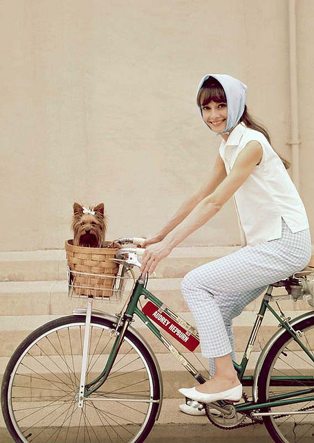 audrey-hepburn-basket-bike-cute-dog-Favim.com-178937