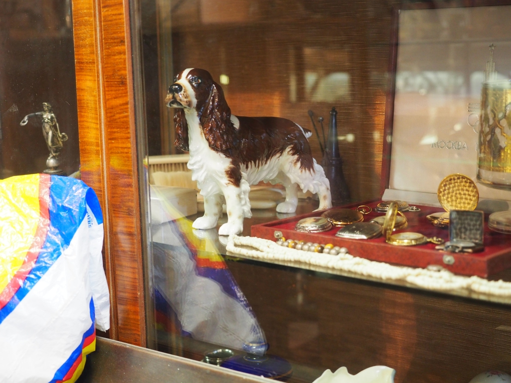 A springer spaniel encased in glass, Athens.